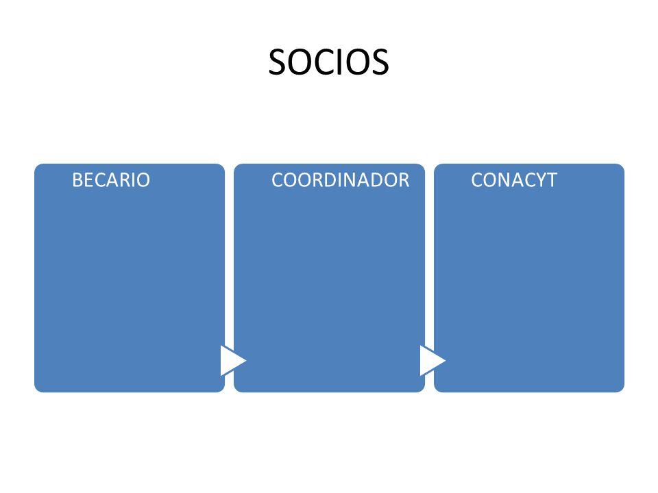 SOCIOS BECARIOCOORDINADORCONACYT