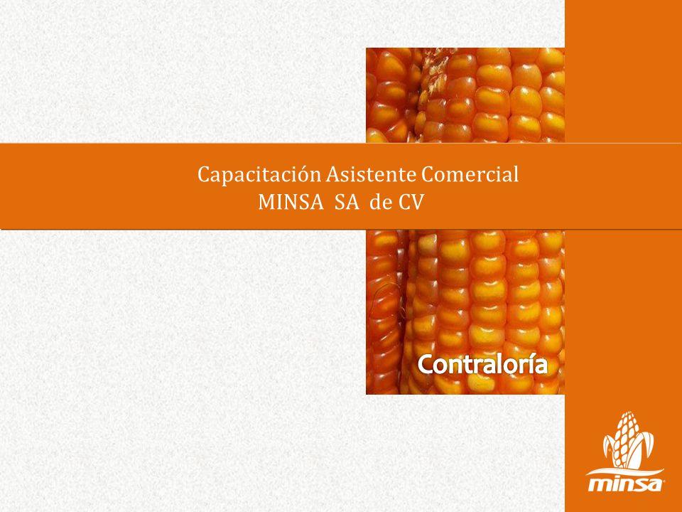 Capacitación Asistente Comercial MINSA SA de CV