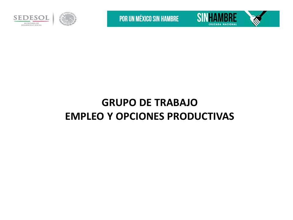 GRUPO DE TRABAJO EMPLEO Y OPCIONES PRODUCTIVAS