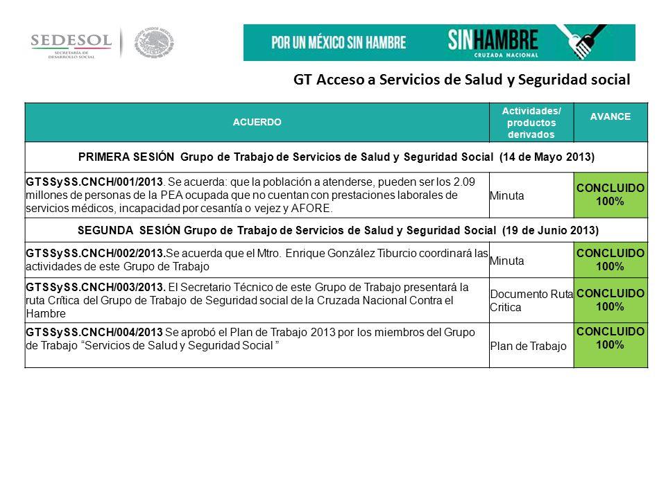 GT Acceso a Servicios de Salud y Seguridad social ACUERDO Actividades/ productos derivados AVANCE PRIMERA SESIÓN Grupo de Trabajo de Servicios de Salud y Seguridad Social (14 de Mayo 2013) GTSSySS.CNCH/001/2013.