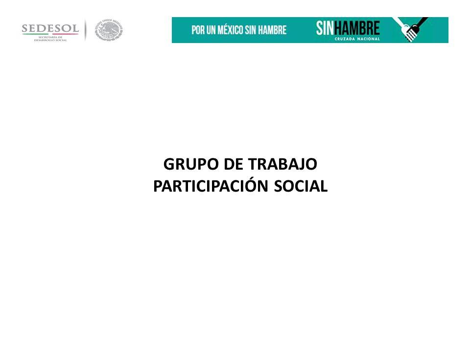 GRUPO DE TRABAJO PARTICIPACIÓN SOCIAL
