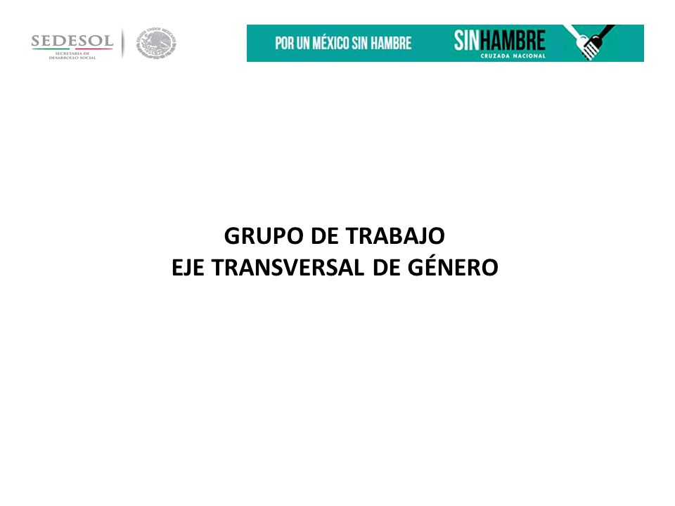 GRUPO DE TRABAJO EJE TRANSVERSAL DE GÉNERO