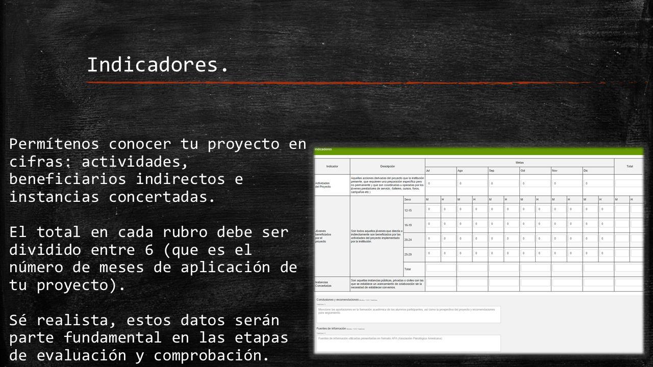 Permítenos conocer tu proyecto en cifras: actividades, beneficiarios indirectos e instancias concertadas.