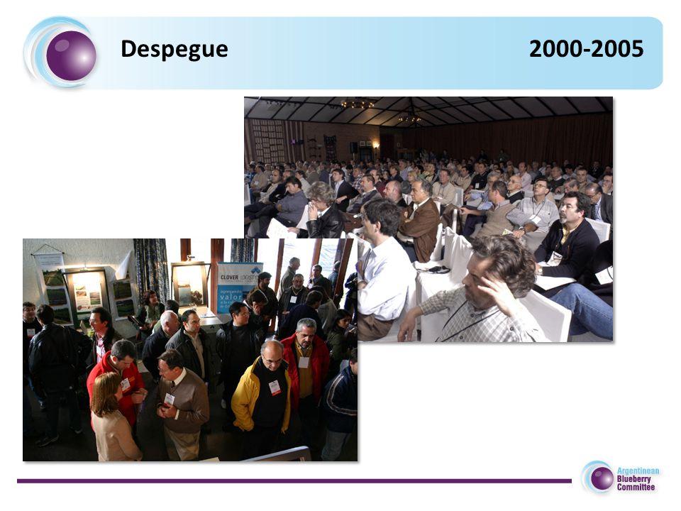 Despegue2000-2005