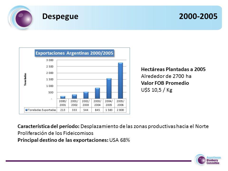 Hectáreas Plantadas a 2005 Alrededor de 2700 ha Valor FOB Promedio U$S 10,5 / Kg Característica del período: Desplazamiento de las zonas productivas hacia el Norte Proliferación de los Fideicomisos Principal destino de las exportaciones: USA 68%