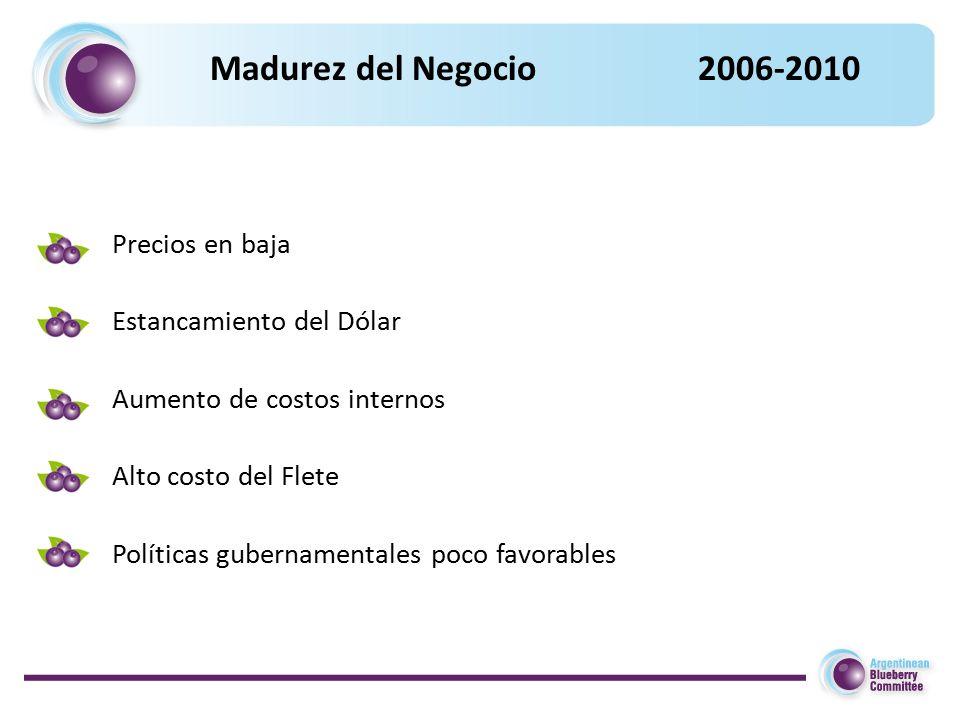 Madurez del Negocio 2006-2010 Precios en baja Estancamiento del Dólar Aumento de costos internos Alto costo del Flete Políticas gubernamentales poco favorables