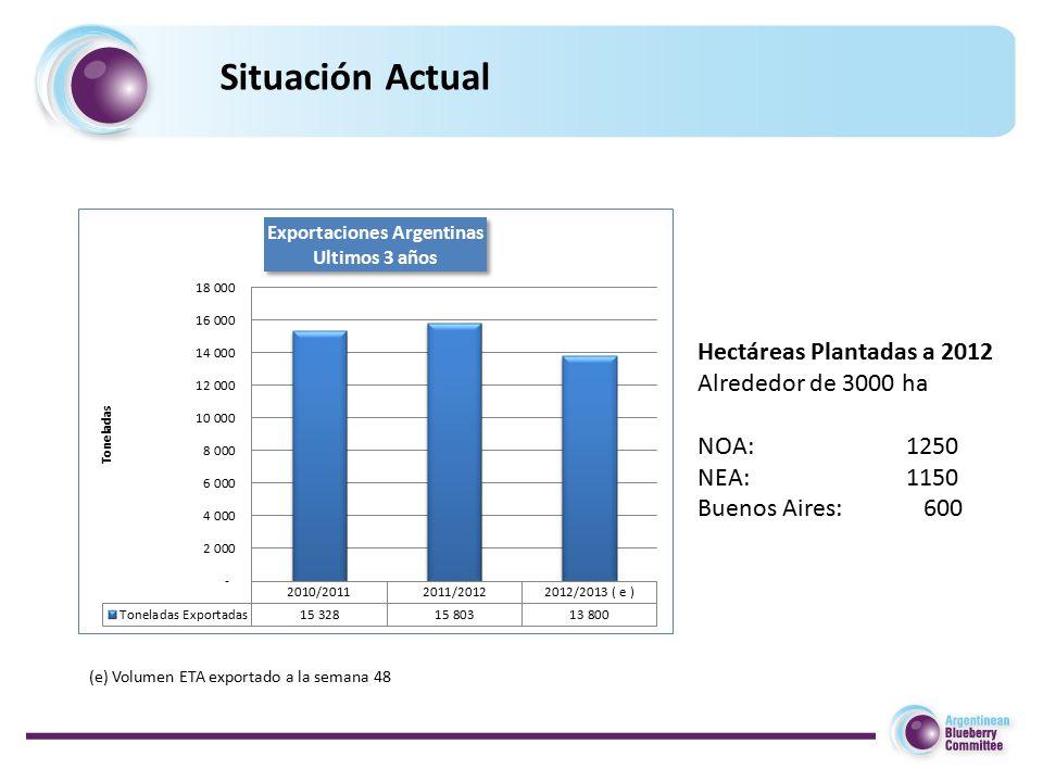 Situación Actual Hectáreas Plantadas a 2012 Alrededor de 3000 ha NOA: 1250 NEA: 1150 Buenos Aires: 600 (e) Volumen ETA exportado a la semana 48