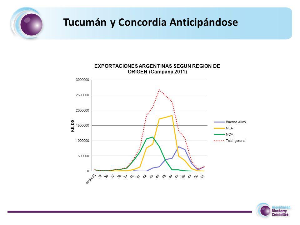 Tucumán y Concordia Anticipándose