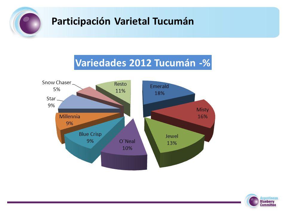 Participación Varietal Tucumán