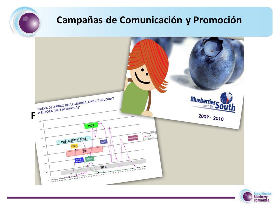 Fall for Argentinean Blueberries Campañas de Comunicación y Promoción
