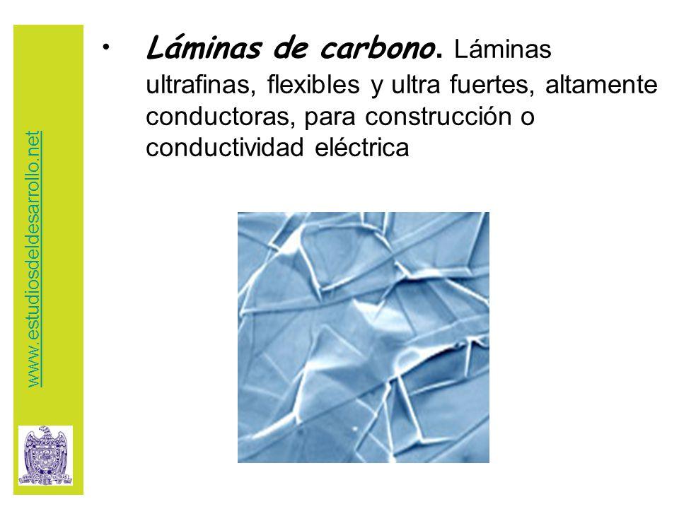 Láminas de carbono.