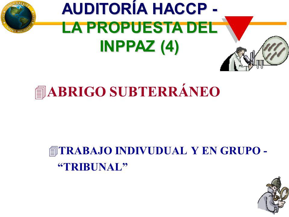 4ABRIGO SUBTERRÁNEO 4TRABAJO INDIVUDUAL Y EN GRUPO - TRIBUNAL AUDITORÍA HACCP - LA PROPUESTA DEL INPPAZ (4)