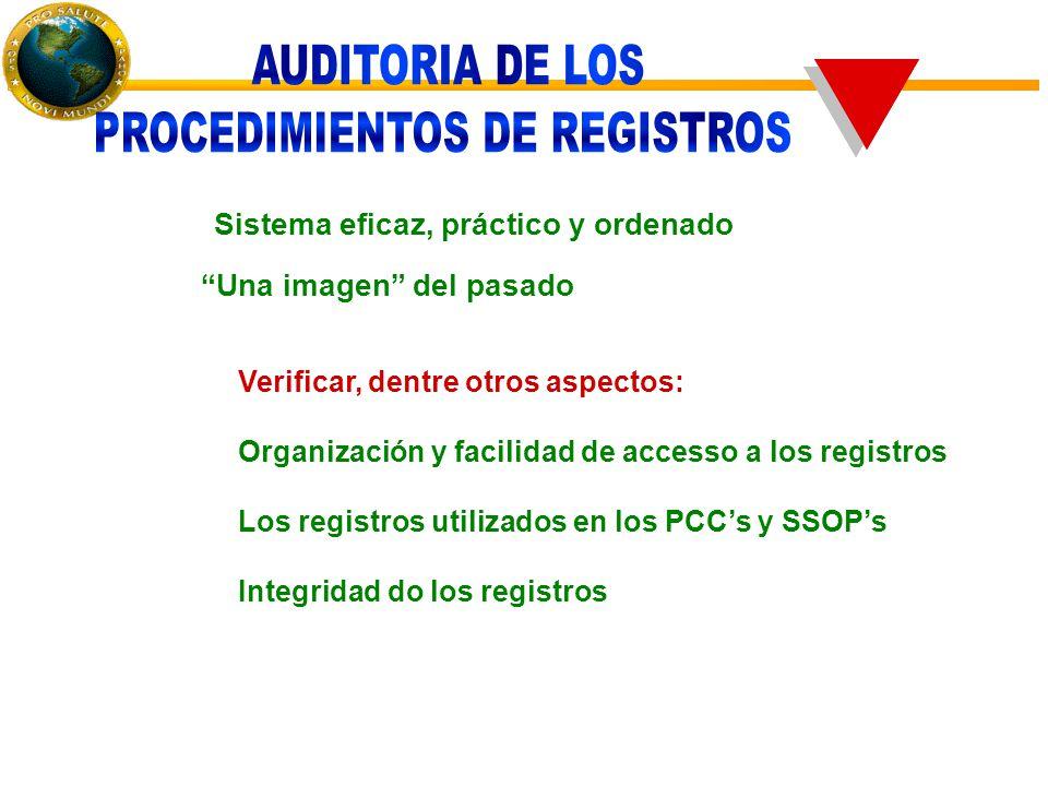 Sistema eficaz, práctico y ordenado Una imagen del pasado Verificar, dentre otros aspectos: Organización y facilidad de accesso a los registros Los registros utilizados en los PCC's y SSOP's Integridad do los registros