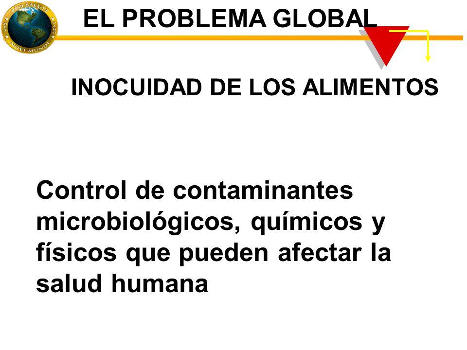 Control de contaminantes microbiológicos, químicos y físicos que pueden afectar la salud humana INOCUIDAD DE LOS ALIMENTOS EL PROBLEMA GLOBAL