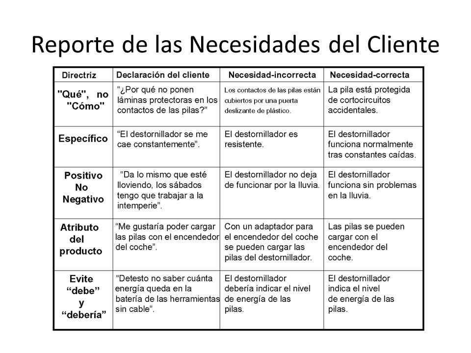 Reporte de las Necesidades del Cliente