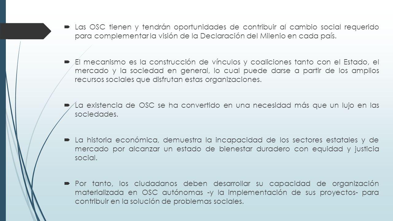  Las OSC tienen y tendrán oportunidades de contribuir al cambio social requerido para complementar la visión de la Declaración del Milenio en cada país.