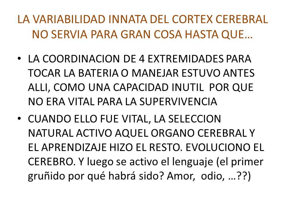 LA VARIABILIDAD INNATA DEL CORTEX CEREBRAL NO SERVIA PARA GRAN COSA HASTA QUE… LA COORDINACION DE 4 EXTREMIDADES PARA TOCAR LA BATERIA O MANEJAR ESTUVO ANTES ALLI, COMO UNA CAPACIDAD INUTIL POR QUE NO ERA VITAL PARA LA SUPERVIVENCIA CUANDO ELLO FUE VITAL, LA SELECCION NATURAL ACTIVO AQUEL ORGANO CEREBRAL Y EL APRENDIZAJE HIZO EL RESTO.