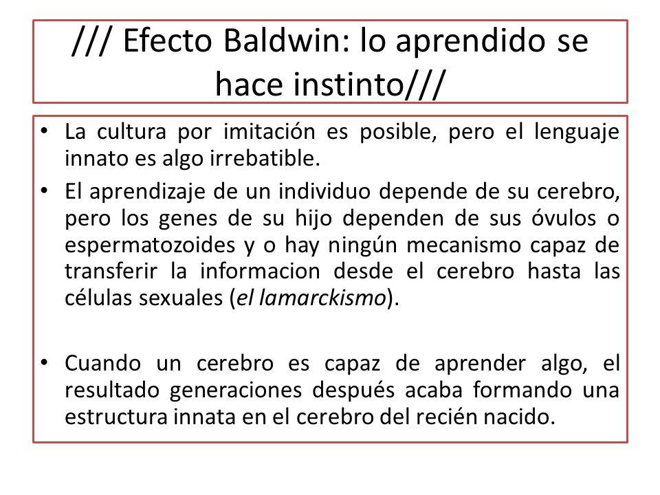 /// Efecto Baldwin: lo aprendido se hace instinto/// La cultura por imitación es posible, pero el lenguaje innato es algo irrebatible.