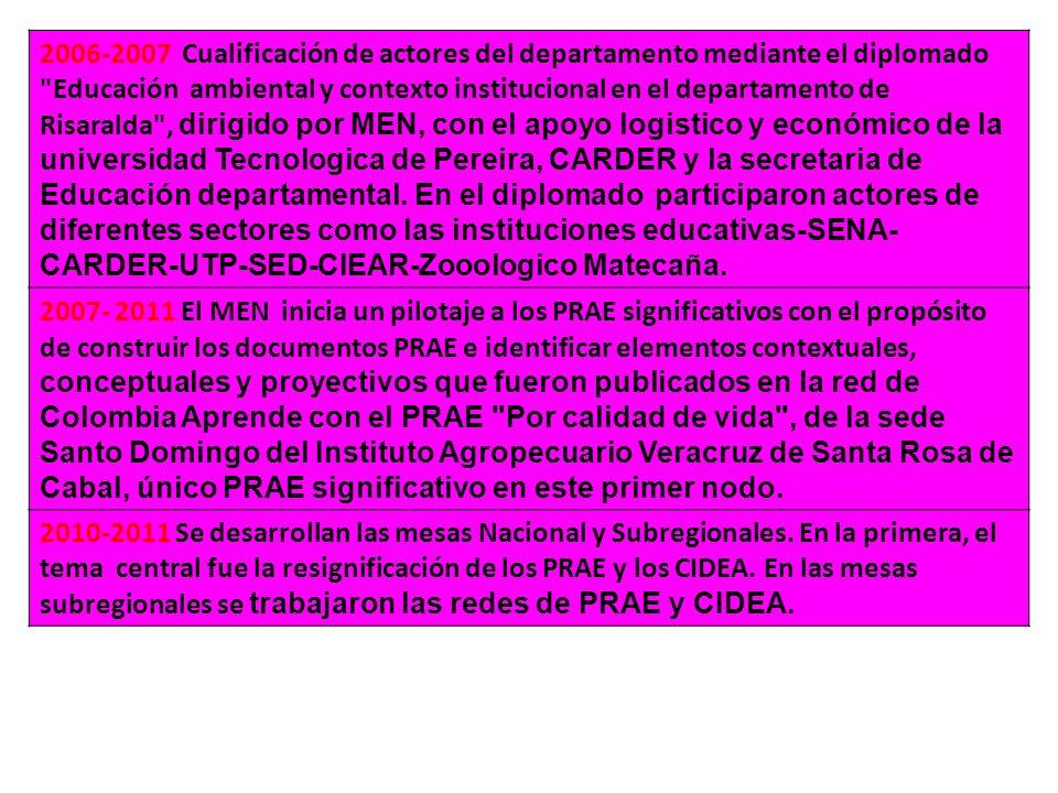 2006-2007 Cualificación de actores del departamento mediante el diplomado Educación ambiental y contexto institucional en el departamento de Risaralda , dirigido por MEN, con el apoyo logistico y económico de la universidad Tecnologica de Pereira, CARDER y la secretaria de Educación departamental.