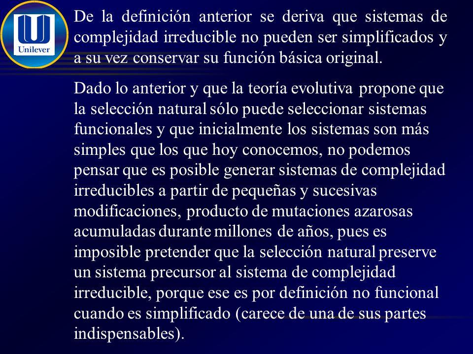 De la definición anterior se deriva que sistemas de complejidad irreducible no pueden ser simplificados y a su vez conservar su función básica original.