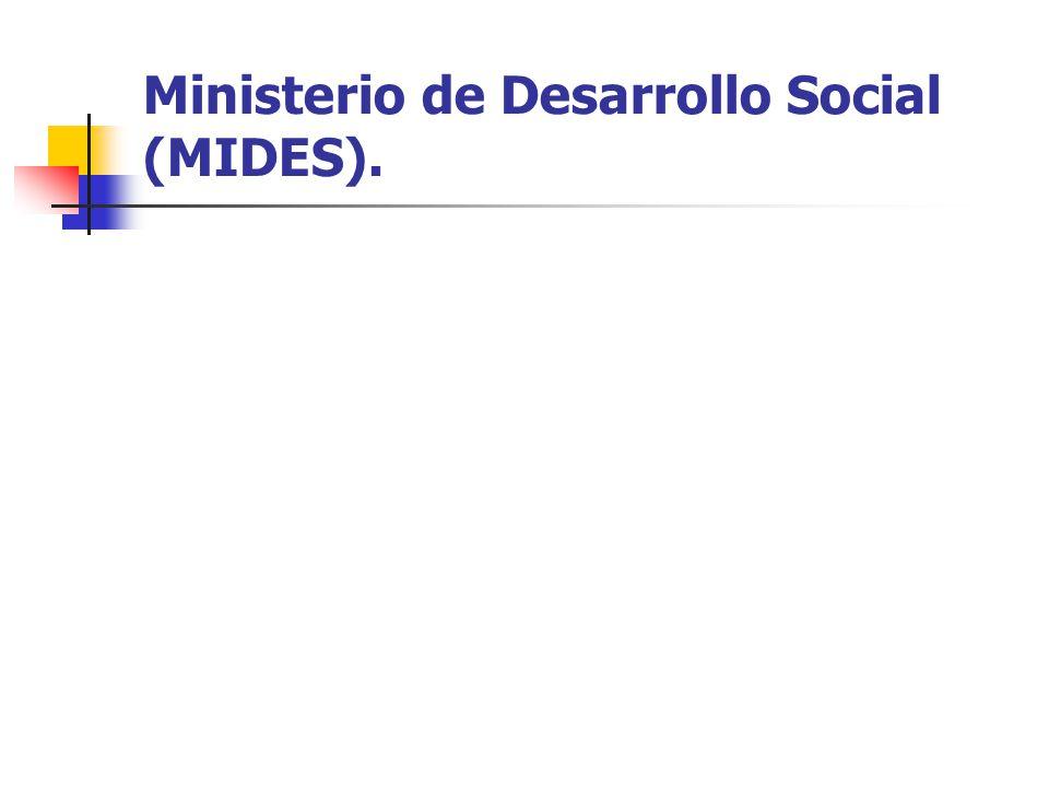 Ministerio de Desarrollo Social (MIDES).