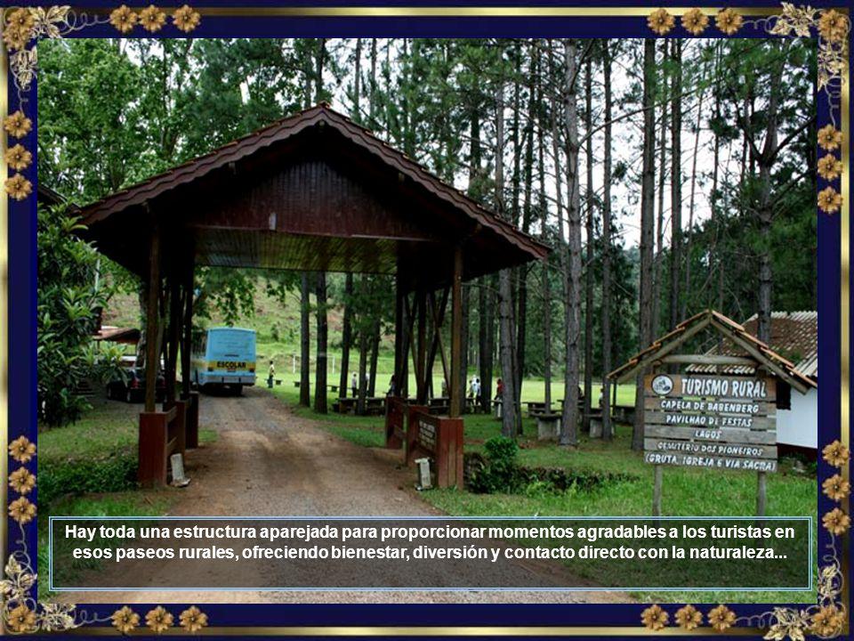 En la zona rural, donde paseos son organizados, se puede notar la producción de uvas y de vinos, cuyas plantaciones engalanan los campos...