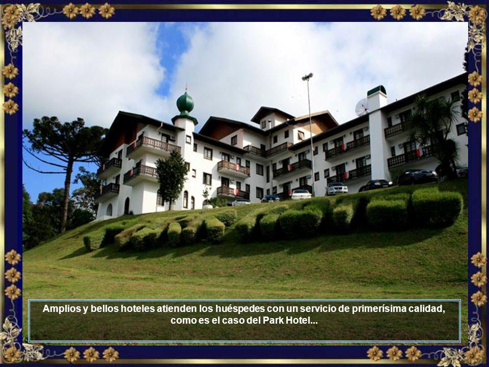 El turismo es cada vez mayor en Treze Tílias y en ciudades vecinas que componen la Ruta de la Amistad, como Piratuba, Fraiburgo y otras...