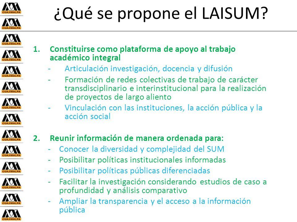 ¿Qué se propone el LAISUM.