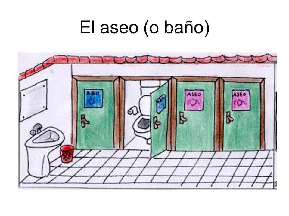 El aseo (o baño)