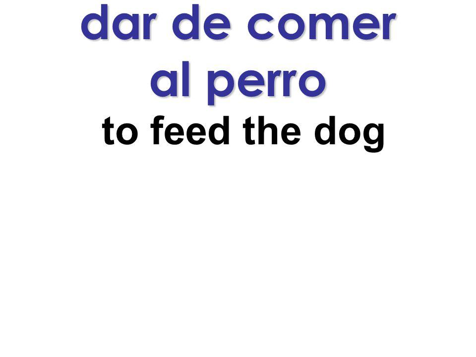 dar de comer al perro to feed the dog