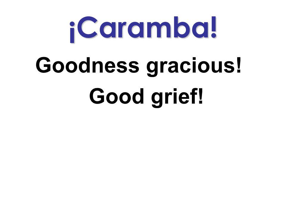 ¡Caramba! Goodness gracious! Good grief!