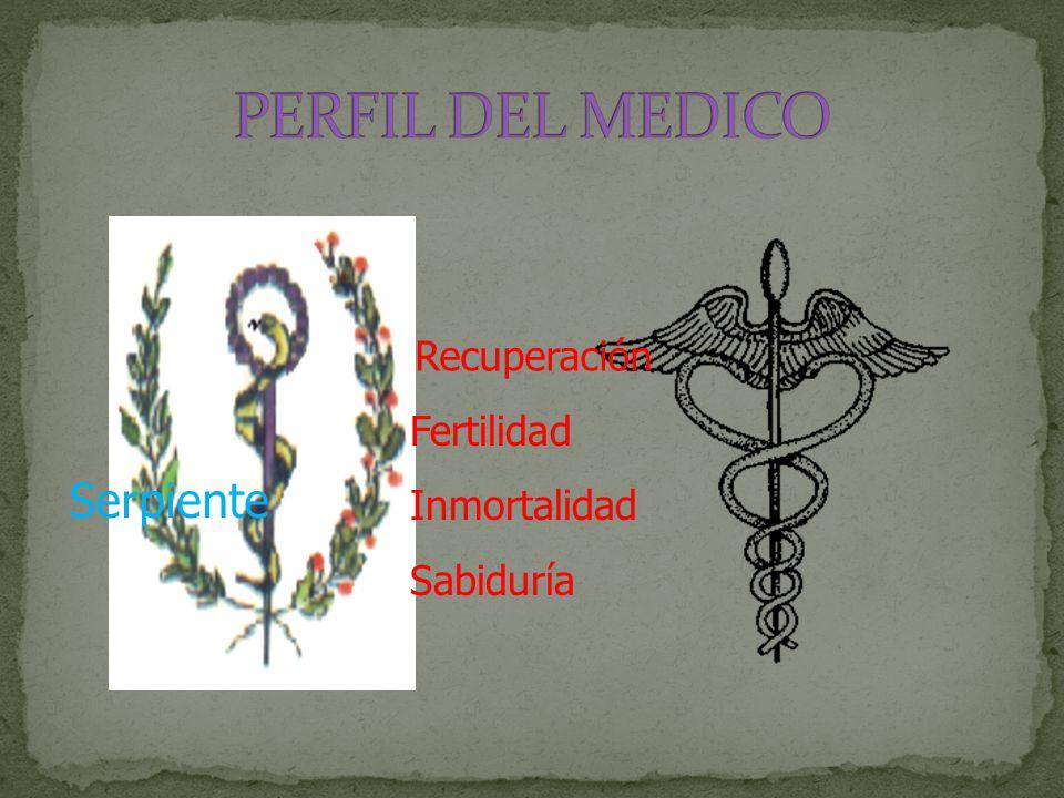 Serpiente Recuperación Fertilidad Inmortalidad Sabiduría