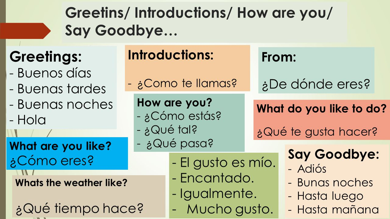 Greetins/ Introductions/ How are you/ Say Goodbye… Greetings: - Buenos días - Buenas tardes - Buenas noches - Hola Introductions: -¿Como te llamas.