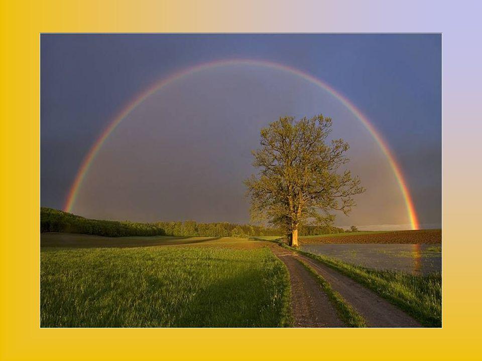 No os espantéis, hijas, de las muchas cosas que es menester mirar para comenzar este viaje divino, que es camino real para el cielo.