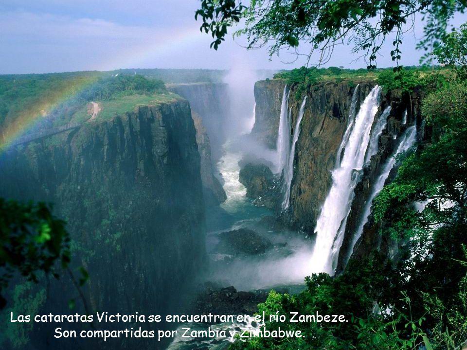 Las cataratas Victoria tienen una longitud de 1,7 km y una altura de 108 m, generando la mayor corriente de agua del mundo.