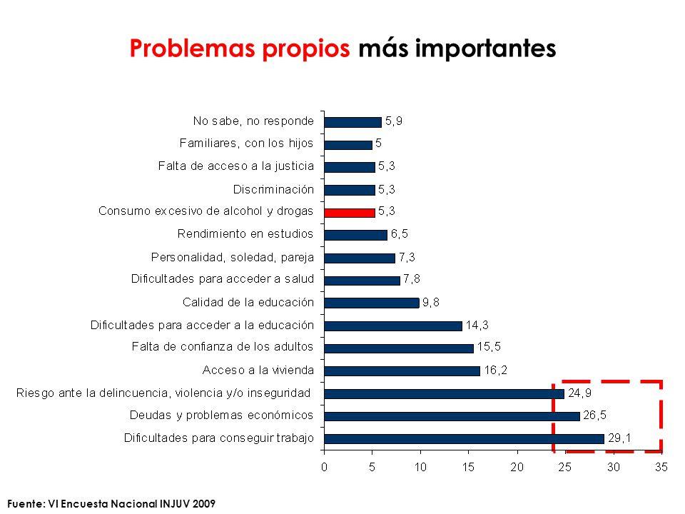 Problemas propios más importantes Fuente: VI Encuesta Nacional INJUV 2009