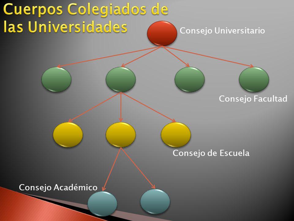 Consejo Universitario Consejo Facultad Consejo de Escuela Consejo Académico