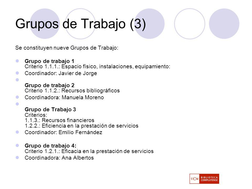 Grupos de Trabajo (3) Se constituyen nueve Grupos de Trabajo: Grupo de trabajo 1 Criterio 1.1.1.: Espacio físico, instalaciones, equipamiento: Coordinador: Javier de Jorge Grupo de trabajo 2 Criterio 1.1.2.: Recursos bibliográficos Coordinadora: Manuela Moreno Grupo de Trabajo 3 Criterios: 1.1.3.: Recursos financieros 1.2.2.: Eficiencia en la prestación de servicios Coordinador: Emilio Fernández Grupo de trabajo 4: Criterio 1.2.1.: Eficacia en la prestación de servicios Coordinadora: Ana Albertos