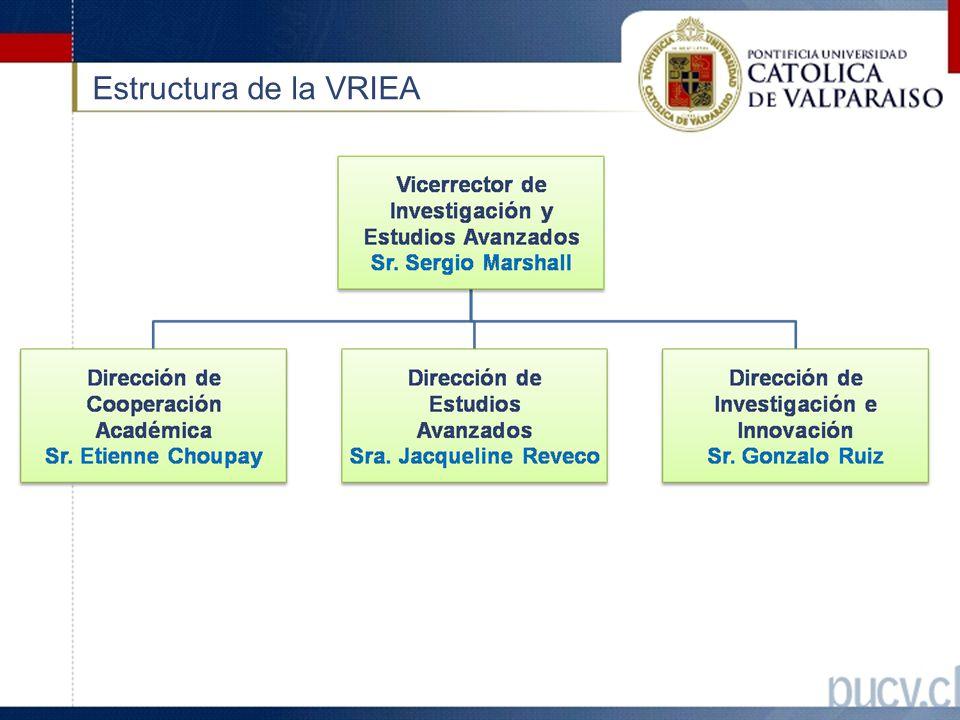 Estructura de la VRIEA