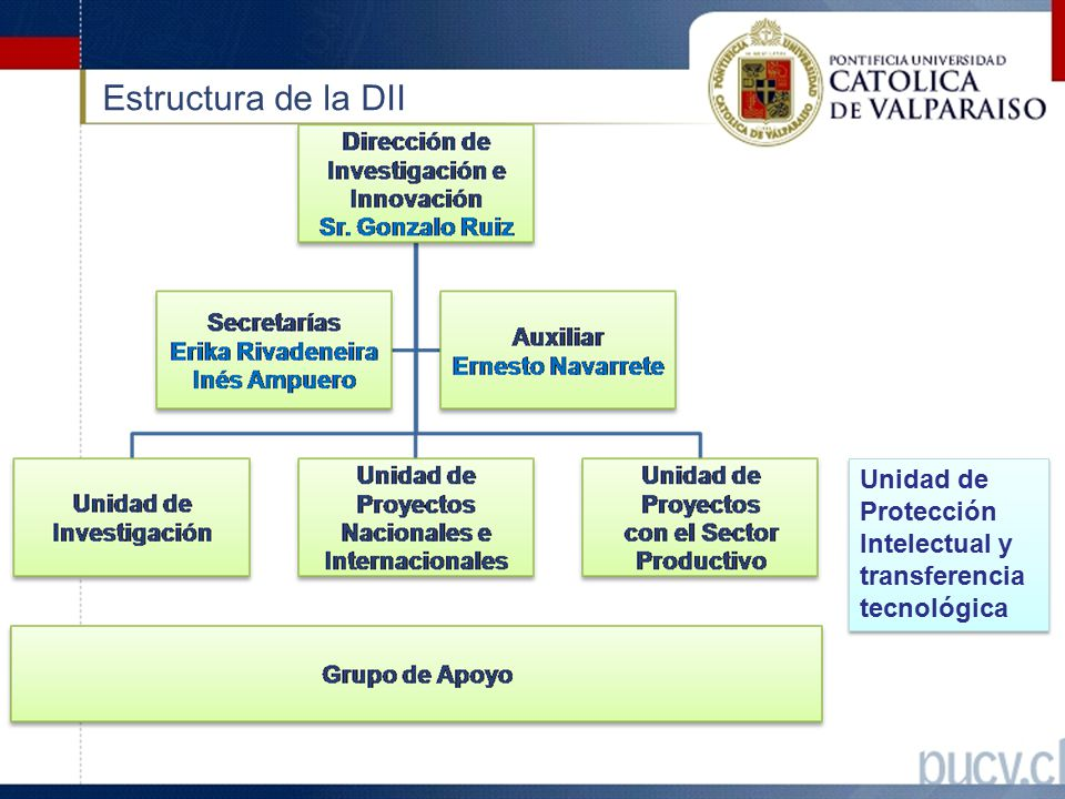Estructura de la DII Unidad de Protección Intelectual y transferencia tecnológica