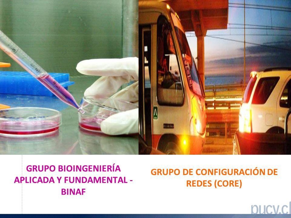 GRUPO BIOINGENIERÍA APLICADA Y FUNDAMENTAL - BINAF GRUPO DE CONFIGURACIÓN DE REDES (CORE)
