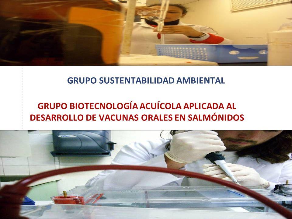 GRUPO SUSTENTABILIDAD AMBIENTAL GRUPO BIOTECNOLOGÍA ACUÍCOLA APLICADA AL DESARROLLO DE VACUNAS ORALES EN SALMÓNIDOS