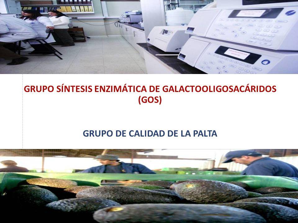 GRUPO SÍNTESIS ENZIMÁTICA DE GALACTOOLIGOSACÁRIDOS (GOS) GRUPO DE CALIDAD DE LA PALTA