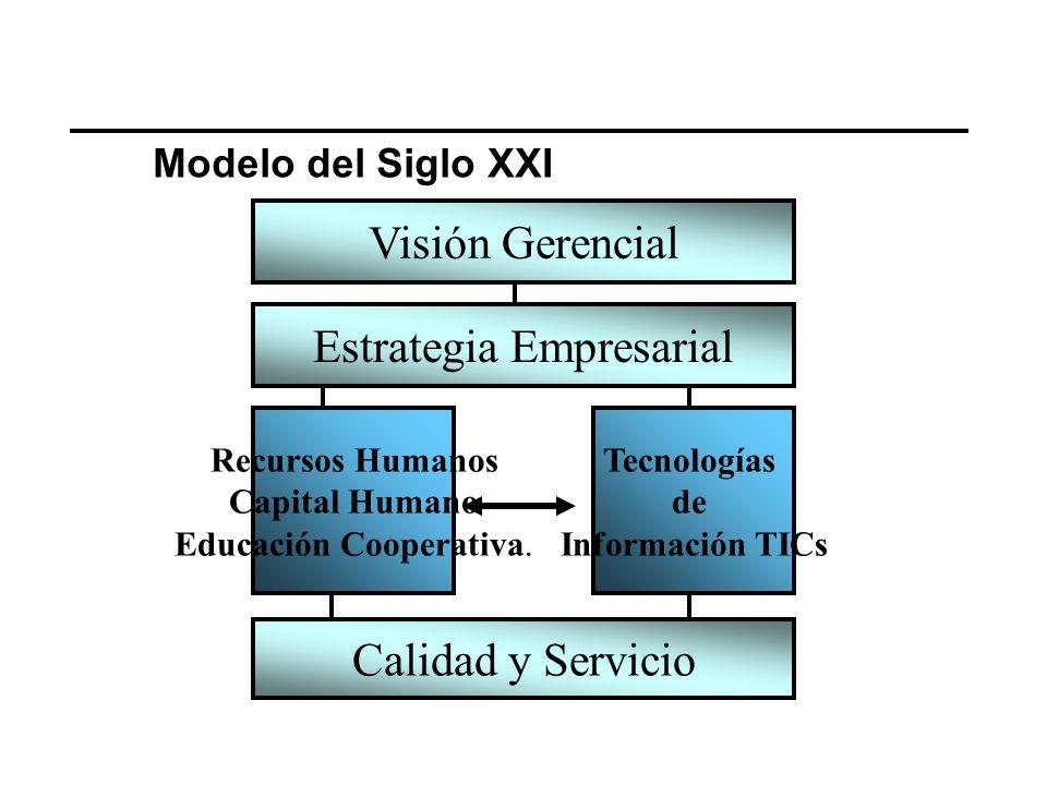Visión Gerencial Estrategia Empresarial Recursos Humanos Capital Humano Educación Cooperativa.