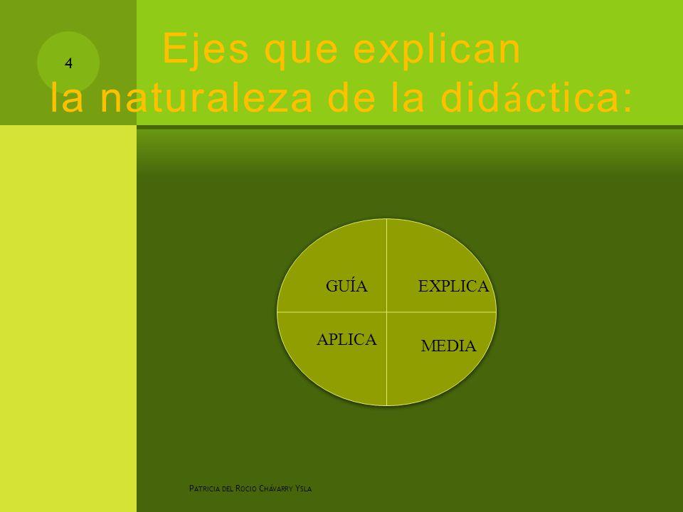 Ejes que explican la naturaleza de la did á ctica: P ATRICIA DEL R OCIO C HÁVARRY Y SLA 4 EXPLICA MEDIA GUÍA APLICA