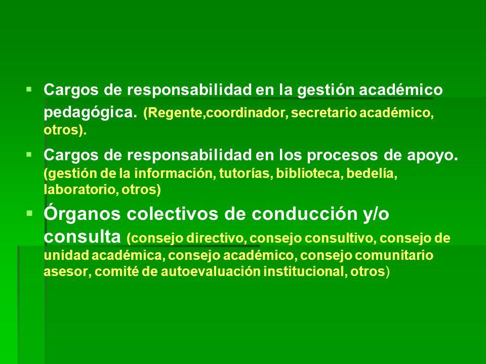   Cargos de responsabilidad en la gestión académico pedagógica.