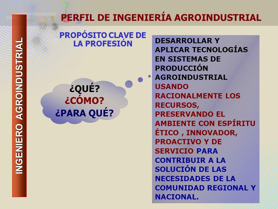 INGENIERO AGROINDUSTRIAL PROPÓSITO CLAVE DE LA PROFESIÓN DESARROLLAR Y APLICAR TECNOLOGÍAS EN SISTEMAS DE PRODUCCIÓN AGROINDUSTRIAL USANDO RACIONALMENTE LOS RECURSOS, PRESERVANDO EL AMBIENTE CON ESPÍRITU ÉTICO, INNOVADOR, PROACTIVO Y DE SERVICIO PARA CONTRIBUIR A LA SOLUCIÓN DE LAS NECESIDADES DE LA COMUNIDAD REGIONAL Y NACIONAL.