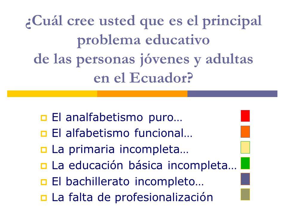 ¿Cuál cree usted que es el principal problema educativo de las personas jóvenes y adultas en el Ecuador.