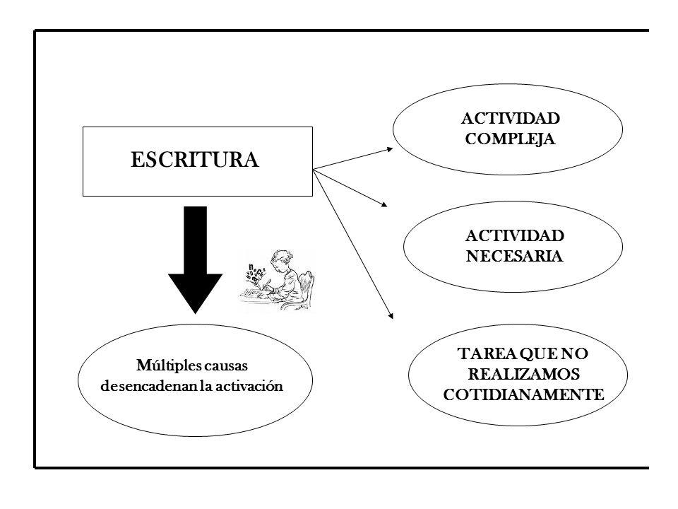 ESCRITURA ACTIVIDAD COMPLEJA ACTIVIDAD NECESARIA TAREA QUE NO REALIZAMOS COTIDIANAMENTE Múltiples causas desencadenan la activación