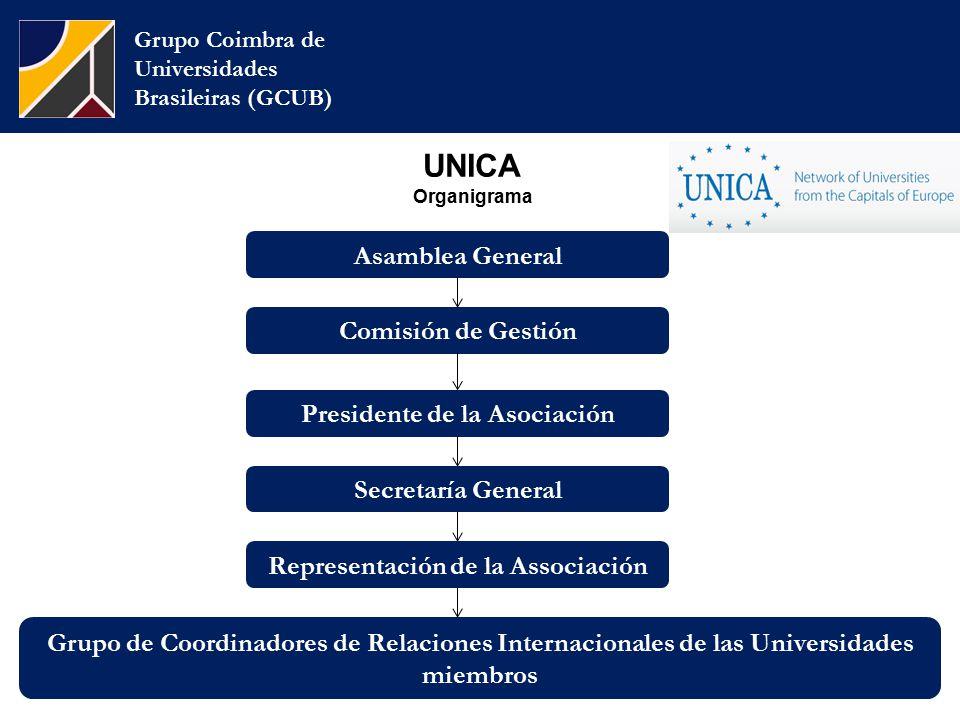 UNICA Organigrama Grupo Coimbra de Universidades Brasileiras (GCUB) Comisión de Gestión Presidente de la Asociación Asamblea General Secretaría General Representación de la Associación Grupo de Coordinadores de Relaciones Internacionales de las Universidades miembros